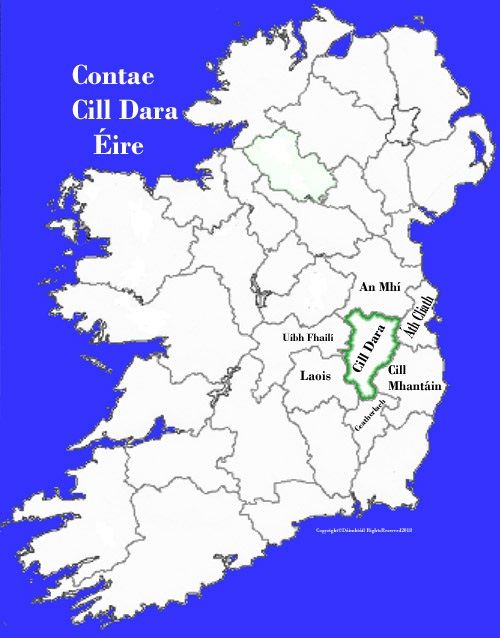 Kildare County Map And Flag Ireland