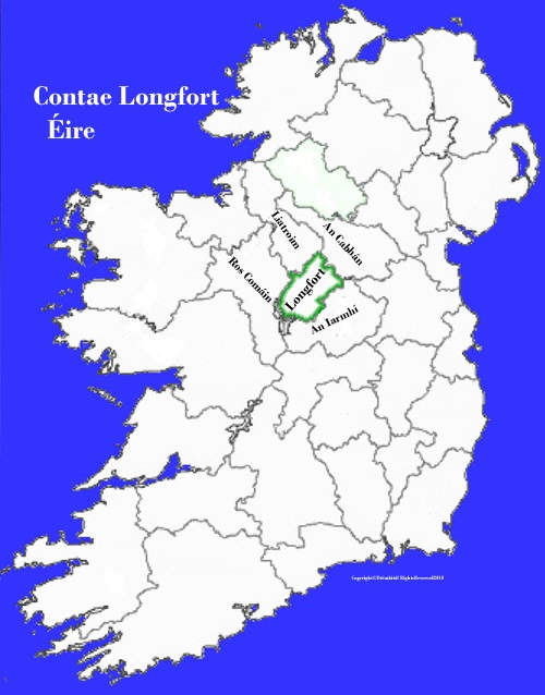 Map Of Ireland Longford.Longford County Map And Flag Ireland