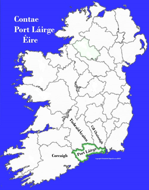 Map Of Waterford Ireland.Waterford County Map And Flag